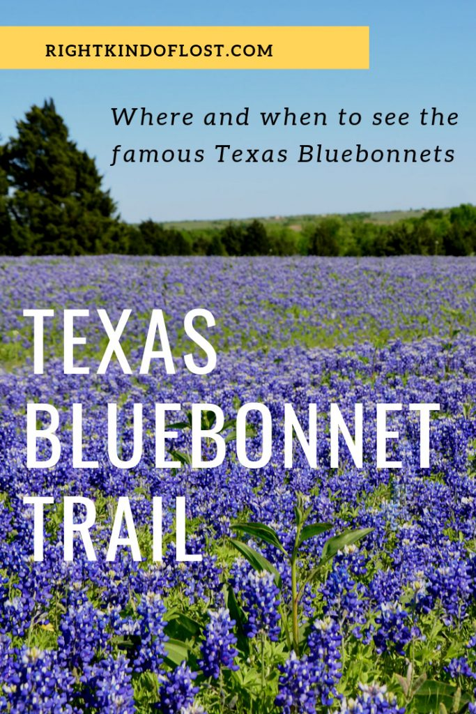 Texas Bluebonnet Trail Right Kind Of Lost